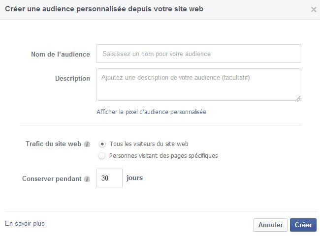 créer une audience personnalisée depuis votre site web