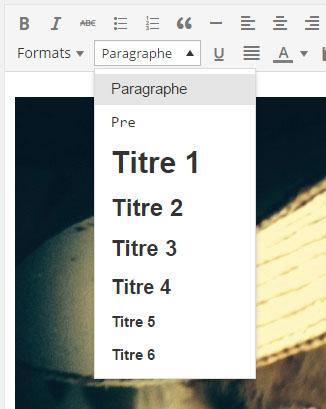 changer le niveau de titre dans wordpress