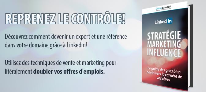 Linkedin: Stratégie, Marketing & Influence (E-Book)